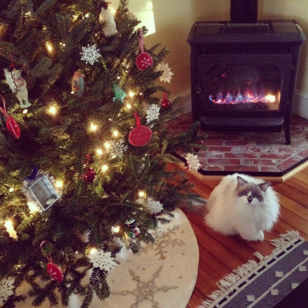 Ramona Raabe | American Christmas